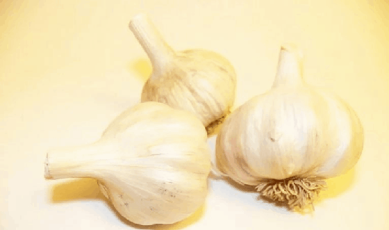 tooth wth infection garlic remedy