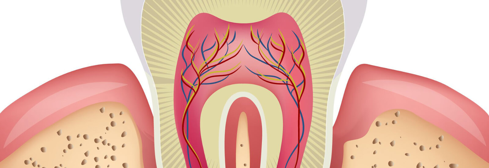 Tooth-Abrasion-and-Erosion-1